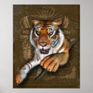 Selvagem sobre tigres posteres