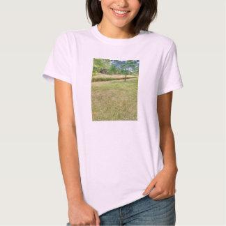 senhoras do tshirt da natureza