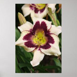 Série botânica 71 impressão