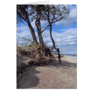 Série litoral #2 da beleza de Maine Cartão De Nota