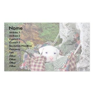 Serviço de assento do animal de estimação feito cartão de visita