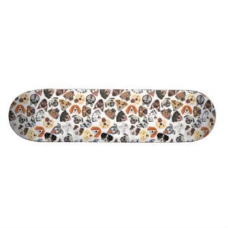 Shape De Skate 19,7cm Cães domésticos doces do teste padrão da