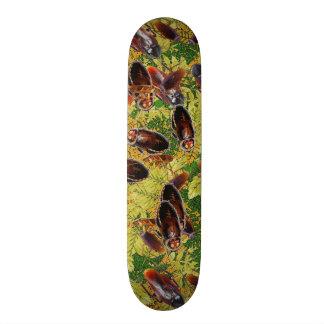 Shape De Skate 20,6cm Baratas