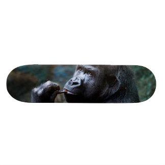 Shape De Skate 20,6cm Gorila das montanhas - dentes da colheita