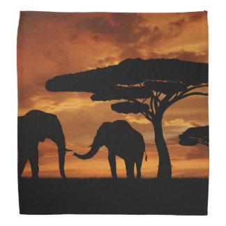 Silhuetas dos elefantes africanos no por do sol bandanas