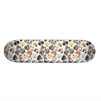 Skate Cães do teste padrão da ilustração