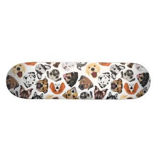 Skate Cães domésticos doces do teste padrão da