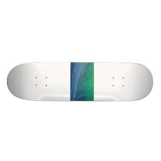 Skate Coleção do esporte de Zazzle