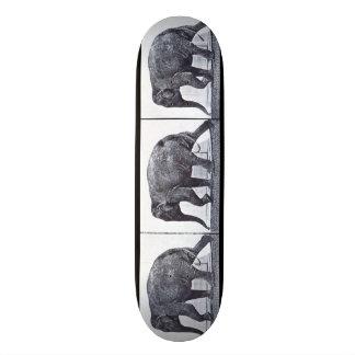 Skate do MOVIMENTO do LOUCO: Passeio do elefante