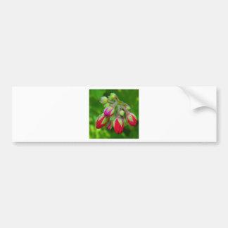 Sobre à flor adesivo
