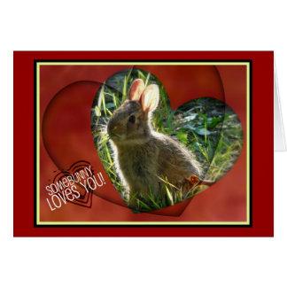 Somebunny ama-o! Fotografia do coelho Cartão Comemorativo