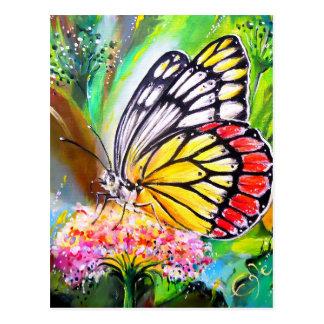 Sonho da borboleta cartão postal