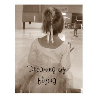 Sonho do gelo que sonha do vôo cartão postal
