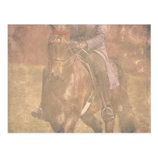 Sonhos de Saddlebred Cartão Postal