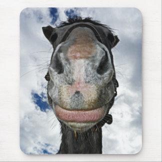 Sorrisos engraçados do cavalo mouse pad