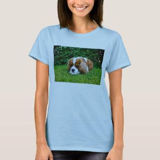 Spaniel de rei Charles descuidado Blenheim na T-shirts