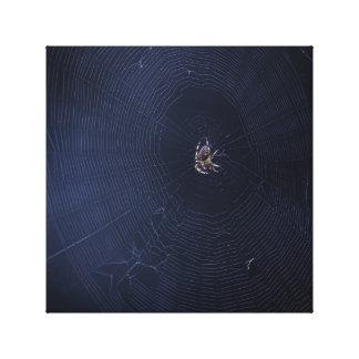 Spider world wide web impressão em tela