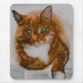 Sr. Alaranjado Mousepad