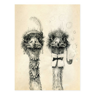Sr. e Sra. Avestruz Cartão Postal