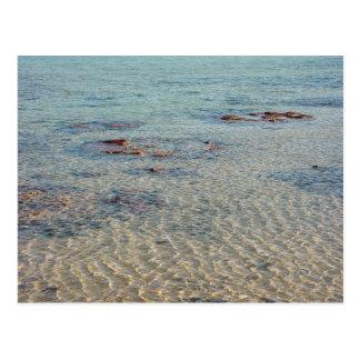 Stromatolites na baía do tubarão cartoes postais