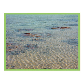 Stromatolites na baía do tubarão cartao postal