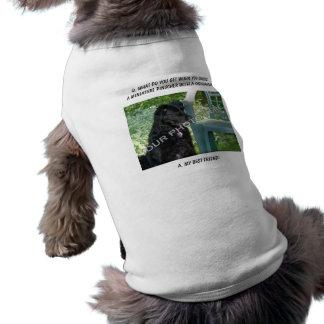 Sua foto! Minha mistura do Pinscher diminuto do me Camisas Para Cães