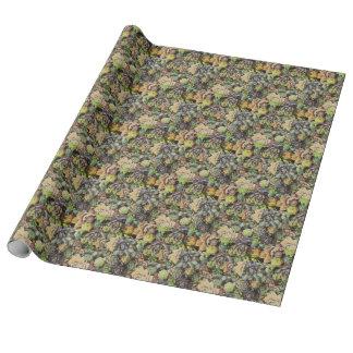 Succulent Sempervivums - filtro do vintage Papel De Presente
