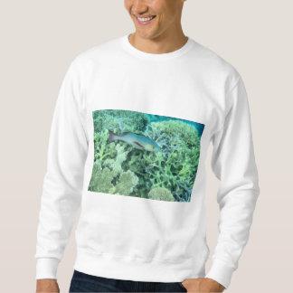 Sueter Peixes que vagueiam o recife