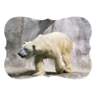 Suporte do urso polar convite 12.7 x 17.78cm