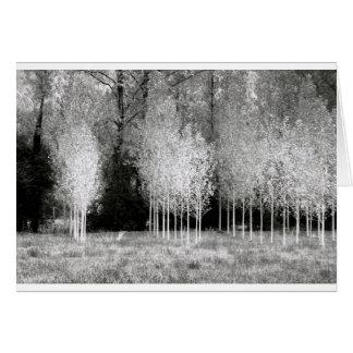 Suportes das árvores cartão comemorativo