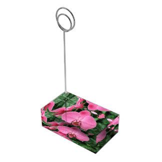 Suportes Para Cartoes De Mesas Orquídeas cor-de-rosa