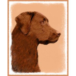 Labrador Retriever (Chocolate)