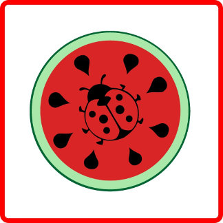 Watermelon and ladybug