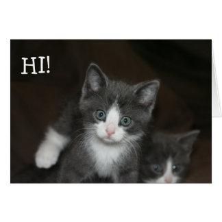 Sweet Kitties limpas a Happy Birthday! Cartão Comemorativo
