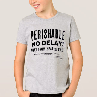 T-shirt Agência expressa da estrada de ferro - perecível -