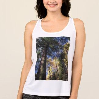 T-shirt árvore de cicuta da floresta primária