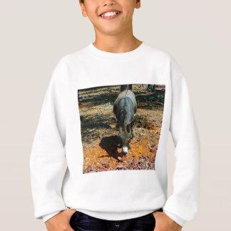 T-shirt asno