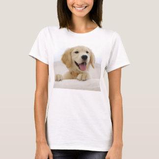 t-shirt básica mulher cão golden retriever