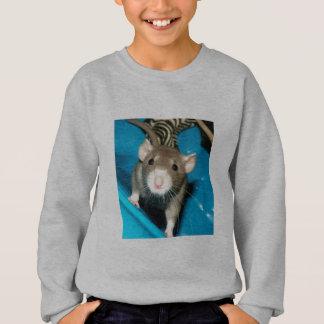 T-shirt Camisola da juventude de Noah