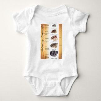 T-shirt da tartaruga