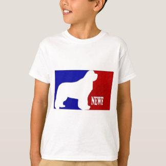 T-shirt NBA 2010 de Terra Nova