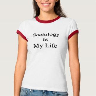 T-shirts A Sociologia é minha vida