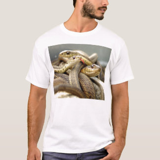 T-shirts assassino