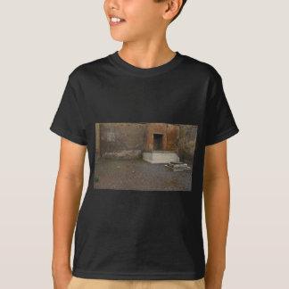 T-shirts Base de Pompeii de uma coluna. Relíquia da