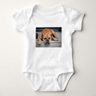T-shirts Cão de Bull