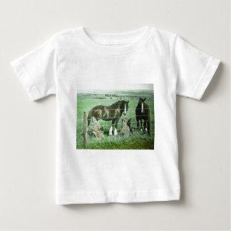 T-shirts Cavalos da corrediça de lanterna mágica