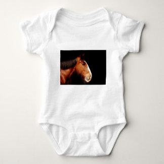 T-shirts condado-cavalo