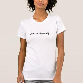 T-shirts dívida em fevereiro