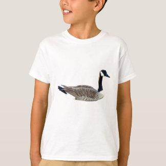T-shirts Ganso canadense