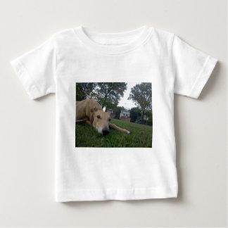 T-shirts indeterminado